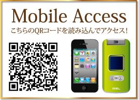 モバイル アクセス